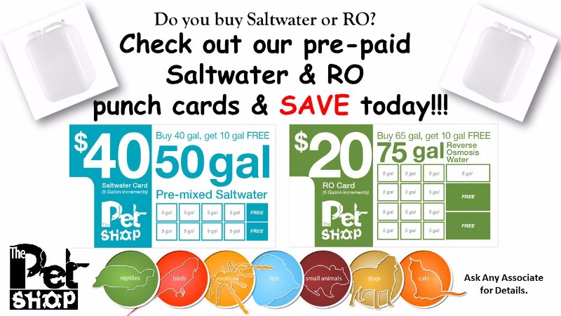 SW & RO Punch Card
